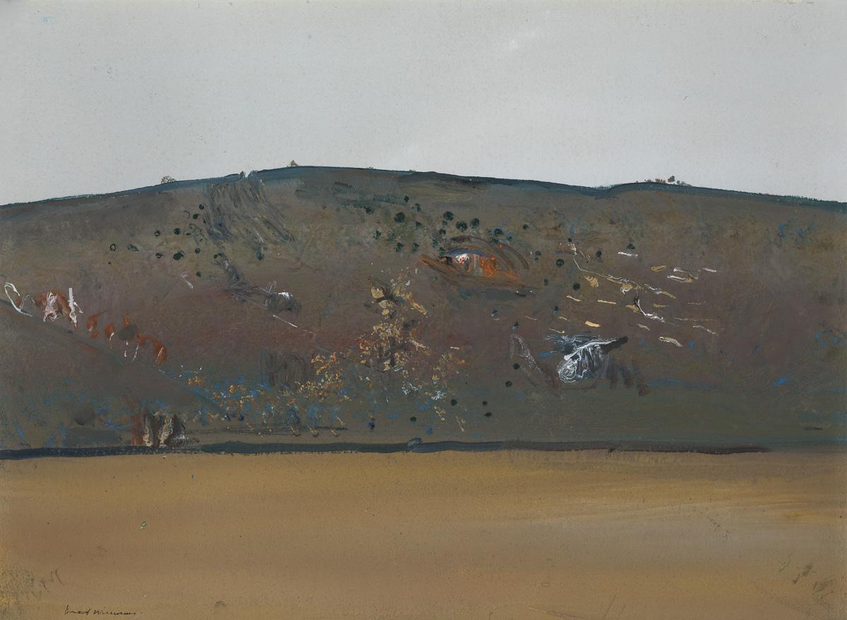 Williams - Eroded Landscape