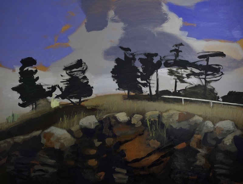 Andrew Sayers Playing Field on Lava Flow, Merri Creek, 2015