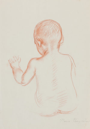 Nora Heysen Native Baby Back Study 215287
