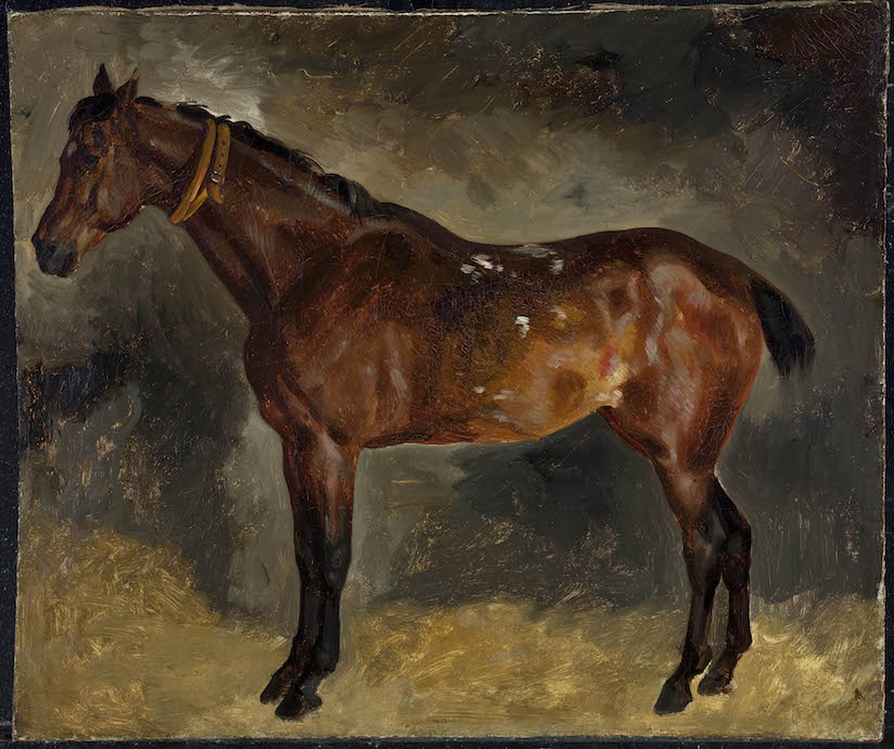 Delacroix Brown Horse