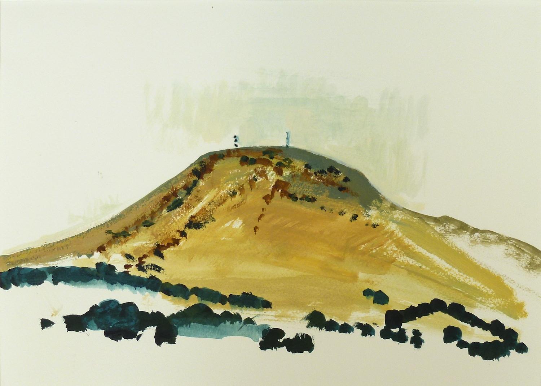 Andrew SAYERS Mt Kooroocheang 218147