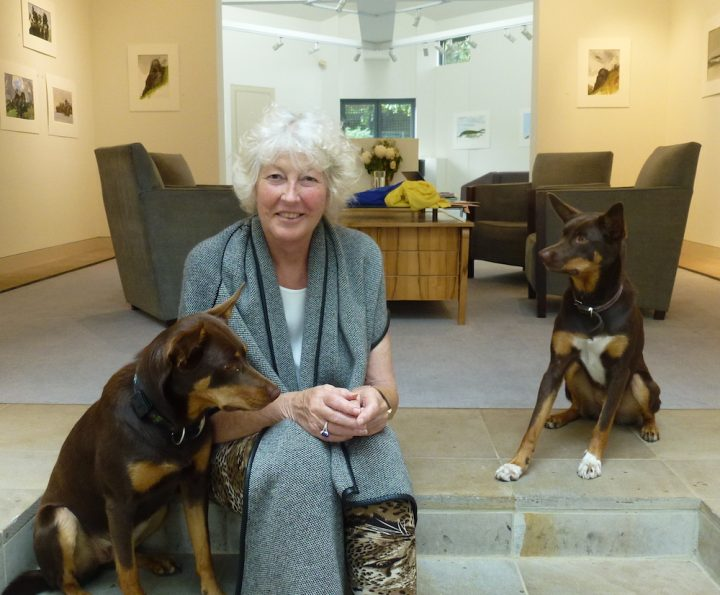 Lauraine Diggins with dogs at the Gallery